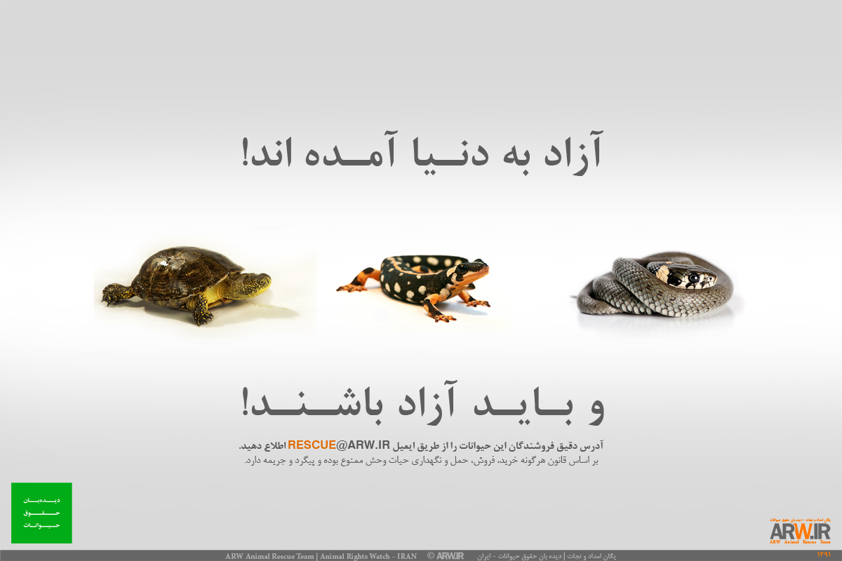 Animal-Rights-Watch-ARW-Public-Awareness-Campaign-106