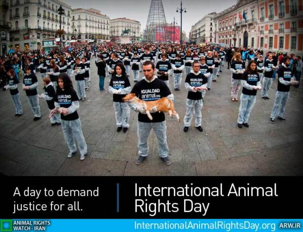 Animal-Rights-Watch-ARW-8190