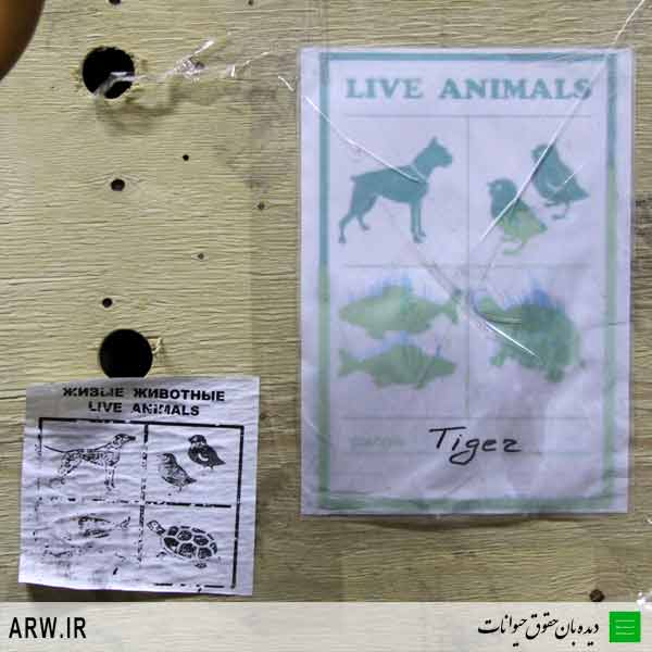 Animal-Rights-Watch-ARW-8519